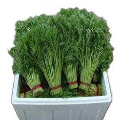 蔬菜泡沫箱